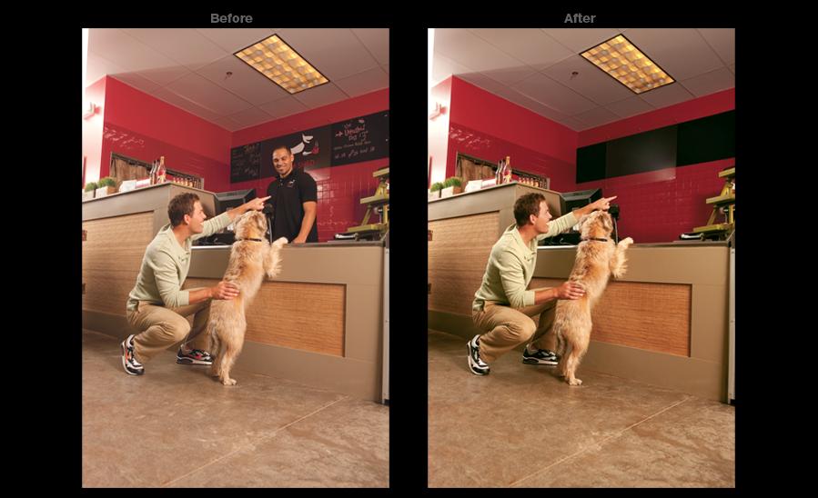 Purina Dog Deli Counter